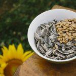 ひまわりの種(食用)の栄養と効果効能!食べ方やカロリー、食べ過ぎによる危険性はある?
